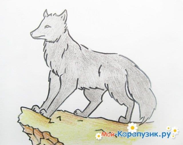 картинки как нарисовать волка и ягненка качественная