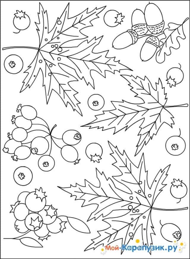 Изображением тюльпана, картинки об осени для детей начальной школы раскраски