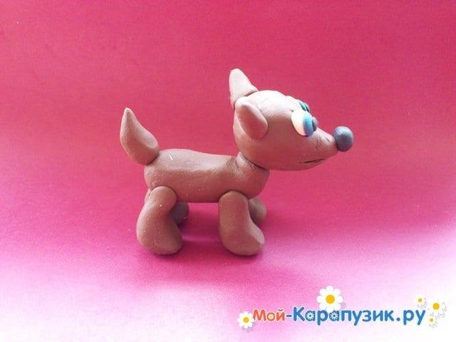 Лепка собаки из пластилина - фото 9.