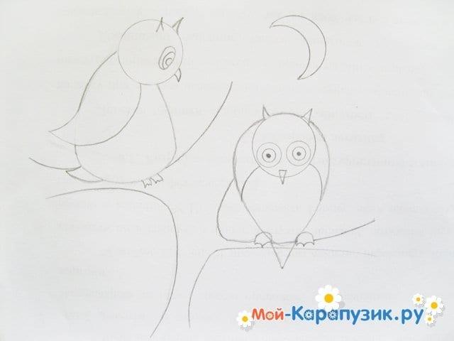Поэтапное рисование совы карандашом - фото 12