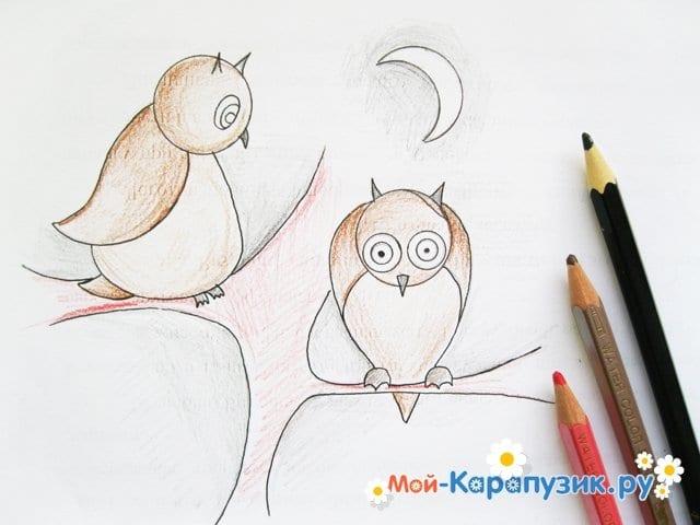 Поэтапное рисование совы карандашом - фото 14