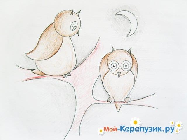 Поэтапное рисование совы карандашом - фото 15
