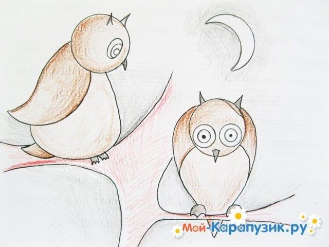 Поэтапное рисование совы карандашом - фото 17