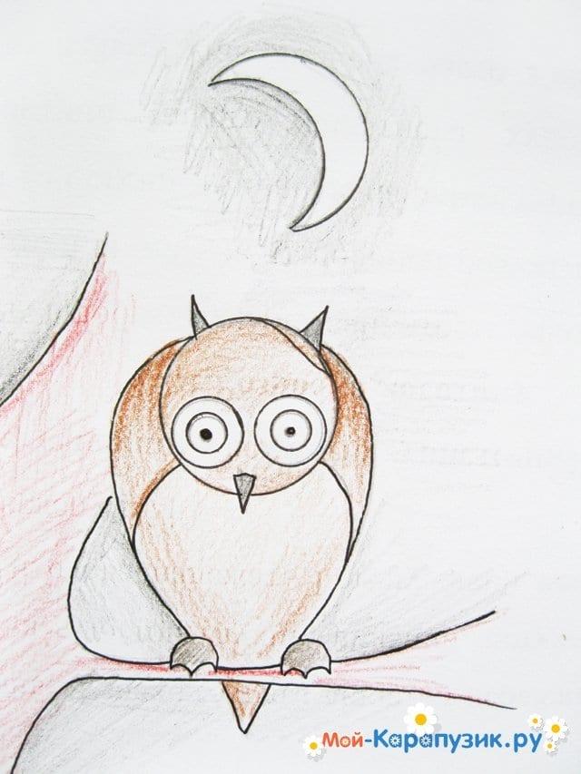 Поэтапное рисование совы карандашом - фото 18