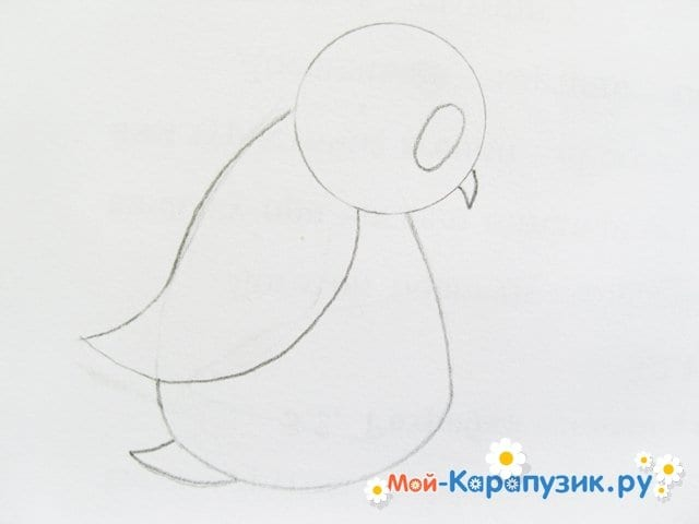 Поэтапное рисование совы карандашом - фото 5