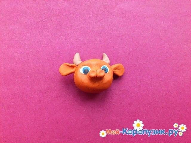 Лепка бычка из пластилина - фото 5
