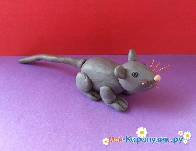 Лепка мыши из пластилина - фото 11
