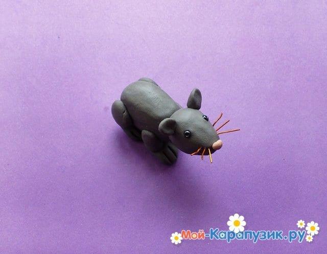 Лепка мыши из пластилина - фото 8