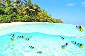 Куда бы я хотел поехать летом
