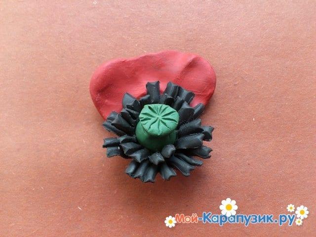Лепка маков из пластилина - фото 12