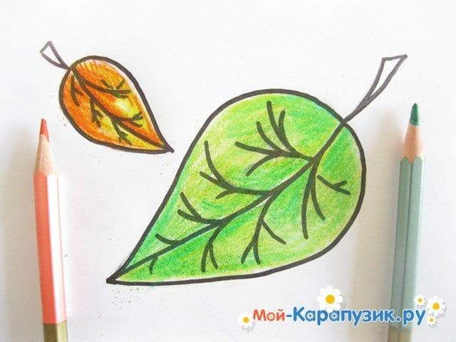 Поэтапное рисование листьев цветными карандашами - фото 10