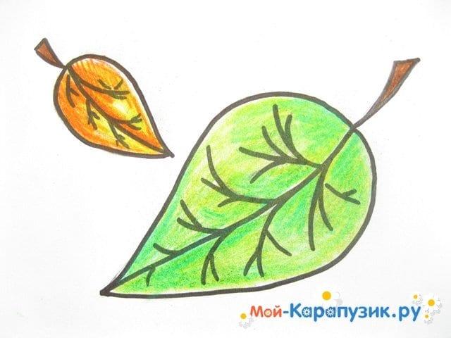 Поэтапное рисование листьев цветными карандашами - фото 12