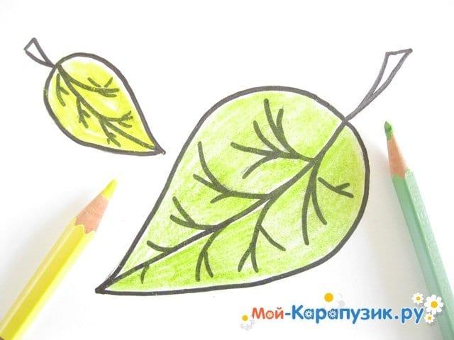 Поэтапное рисование листьев цветными карандашами - фото 9