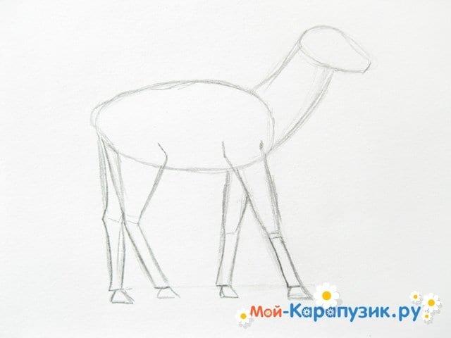 Поэтапное рисование оленя цветными карандашами - фото 5