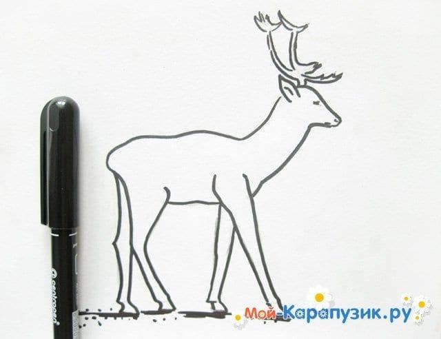 Поэтапное рисование оленя цветными карандашами - фото 9
