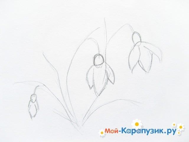 Поэтапное рисование подснежников цветными карандашами - фото 4