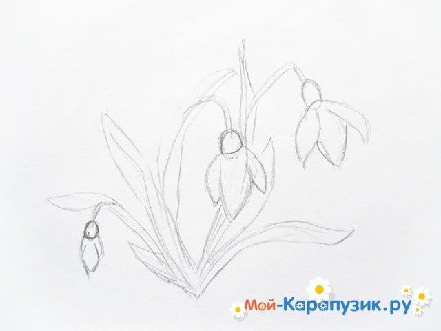 Поэтапное рисование подснежников цветными карандашами - фото 5