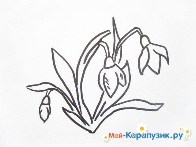 Поэтапное рисование подснежников цветными карандашами - фото 6