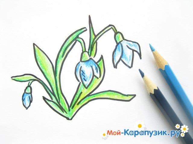 Поэтапное рисование подснежников цветными карандашами - фото 9