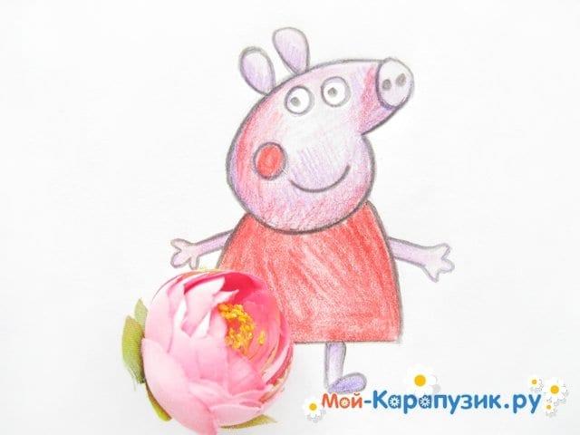 Поэтапное рисование свинки Пеппы цветными карандашами - фото 14