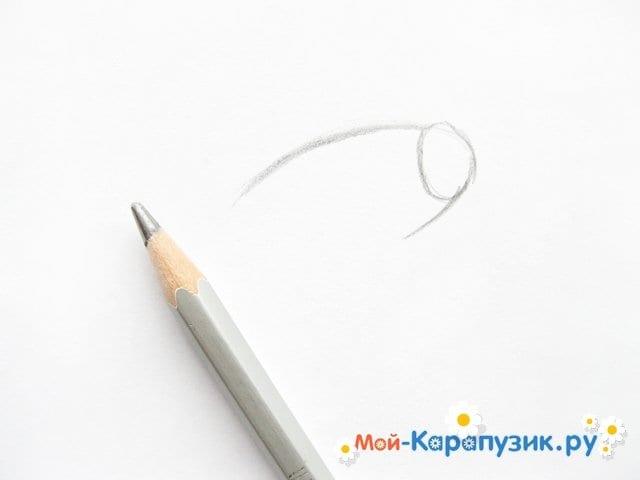Поэтапное рисование свинки Пеппы цветными карандашами - фото 2