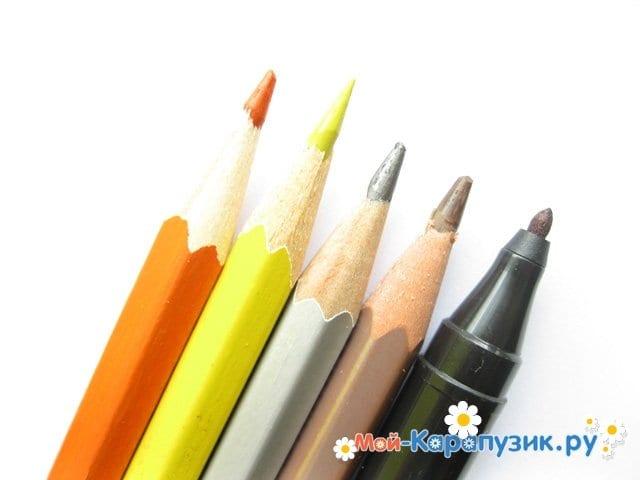 Поэтапное рисование волнистого попугая цветными карандашами - фото 1