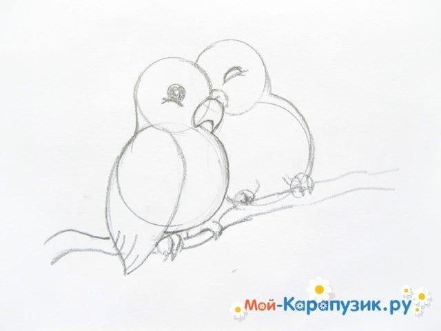 Поэтапное рисование волнистого попугая цветными карандашами - фото 7