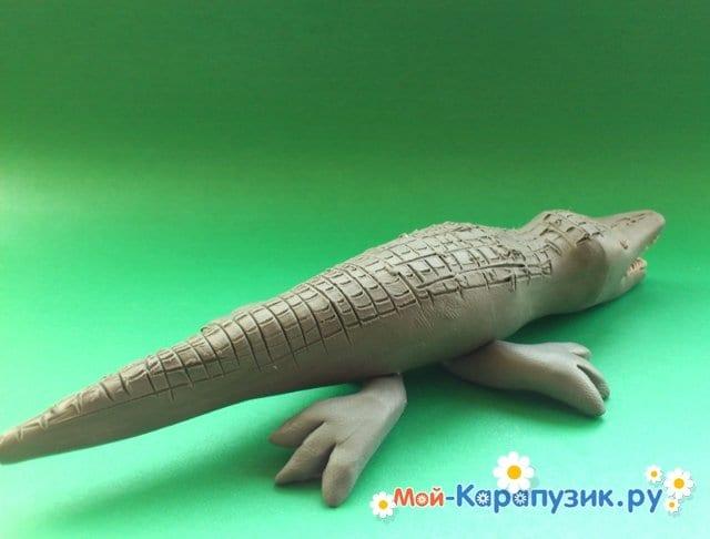 Лепка крокодила из пластилина - фото 15