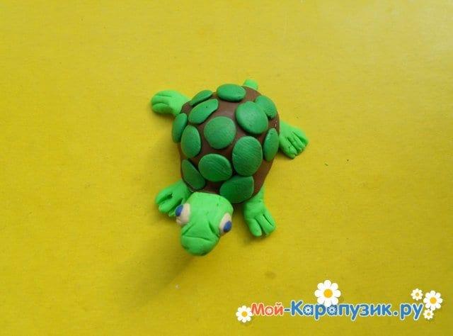 Лепка черепахи из пластилина - фото 13