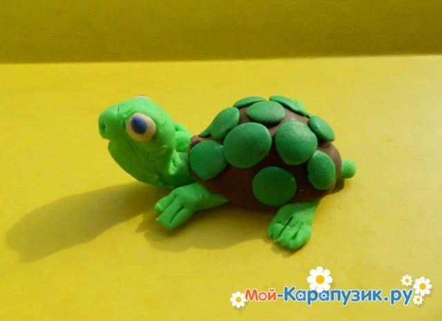 Лепка черепахи из пластилина - фото 14