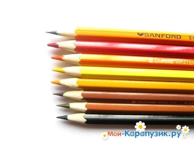 Поэтапное рисование белки цветными карандашами - фото 1