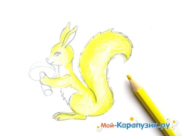 Поэтапное рисование белки цветными карандашами - фото 10