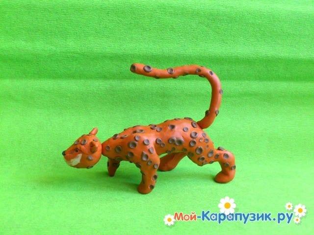 Пошаговая лепка леопарда из пластилина - фото 13
