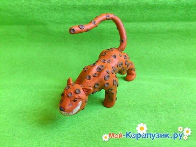 Пошаговая лепка леопарда из пластилина - фото 14